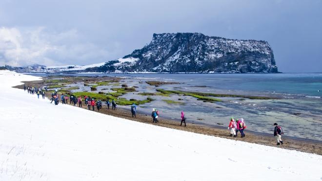 KTO Việt Nam tổ chức giải chạy ảo chinh phục mùa Xuân Jeju