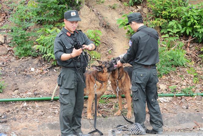 Trong ảnh: Lực lượng chức năng cho chó nghiệp vụ uống nước. Ảnh: Văn Dũng - TTXVN