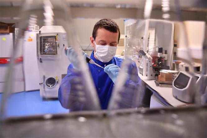 Chuyên gia nghiên cứu vaccine phòng COVID-19 trong phòng thí nghiệm tại Burgess Hill, Anh, ngày 15/5/2020. Ảnh: AFP/ TTXVN