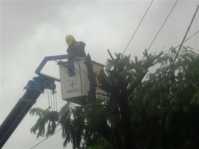 Điện lực Quảng Bình huy động người và máy móc để khắc phục hậu quả sau bão số 5, để sớm cấp điện trở lại. Ảnh: Đức Thọ - TTXVN