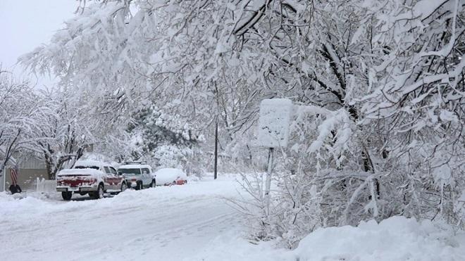 Bão tuyết khiến 1.000 người bị mắc kẹt tại bang Arizona, Mỹ