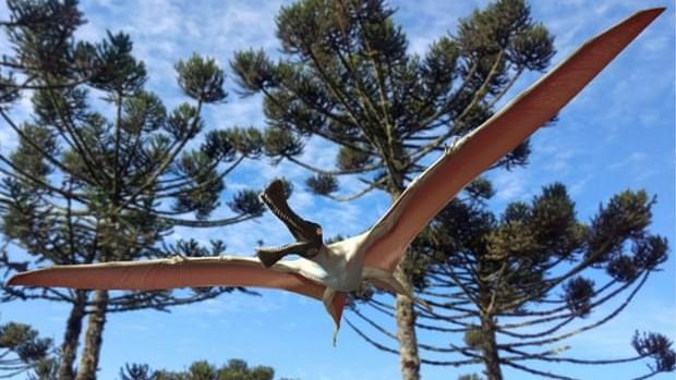 Phát hiện hóa thạch khủng long mới tại Australia