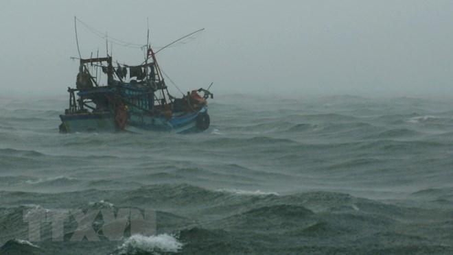 Đề nghị các nước hỗ trợ tìm kiếm 10 lao động của tàu cá bị mất tích
