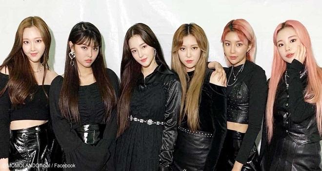 BTS, Blackpink, Twice, Momoland, Red Velvet, EXO