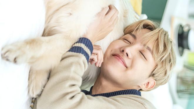 bts, thói quen khi ngủ của bts, jungkook, rm, jin, j-hope, suga, jimin, v