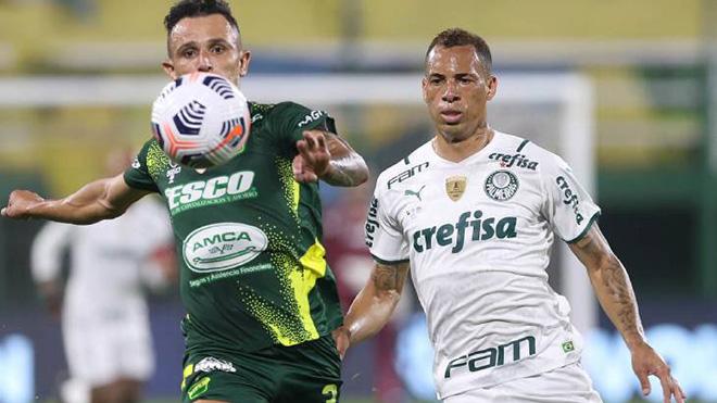 Palmeira vs Defensa y Justicia, trực tiếp bóng đá, lịch thi đấu bóng đá, siêu cúp Nam Mỹ