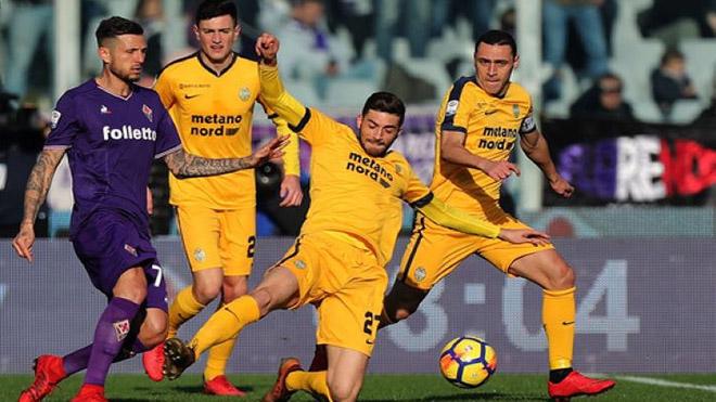 Verona vs Fiorentina, kết quả bóng đá, kết quả Verona vs Fiorentina