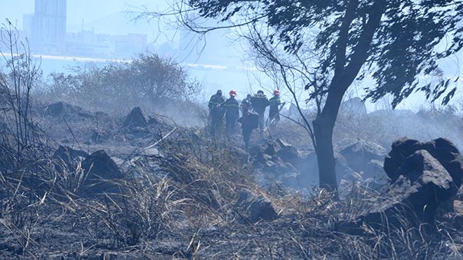 Cháy rừng sơn trà Đà Nẵng, Cháy rừng Sơn Trà, Cháy rừng Đà Nẵng